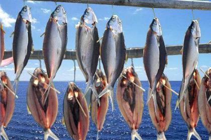 2021年04月06日鱼粉价格涨跌榜
