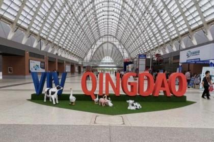 VIV QINGDAO 2021亚洲国际集约化畜牧展览会(青岛)  ——展会基本情况及重要规划